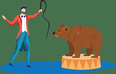 taming a wild bear